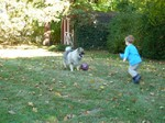 Fozzie and boy playing in a backyard.